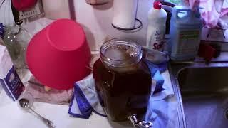 Чайный гриб как приготовить чай для долива 020619