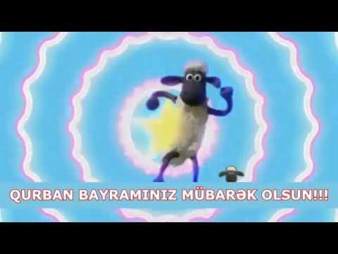 Qurban bayramı təbriki