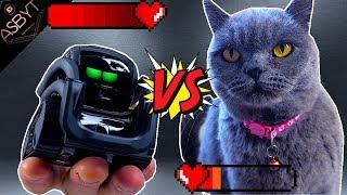 ROBOT vs CAT!!! (Anki Vector)