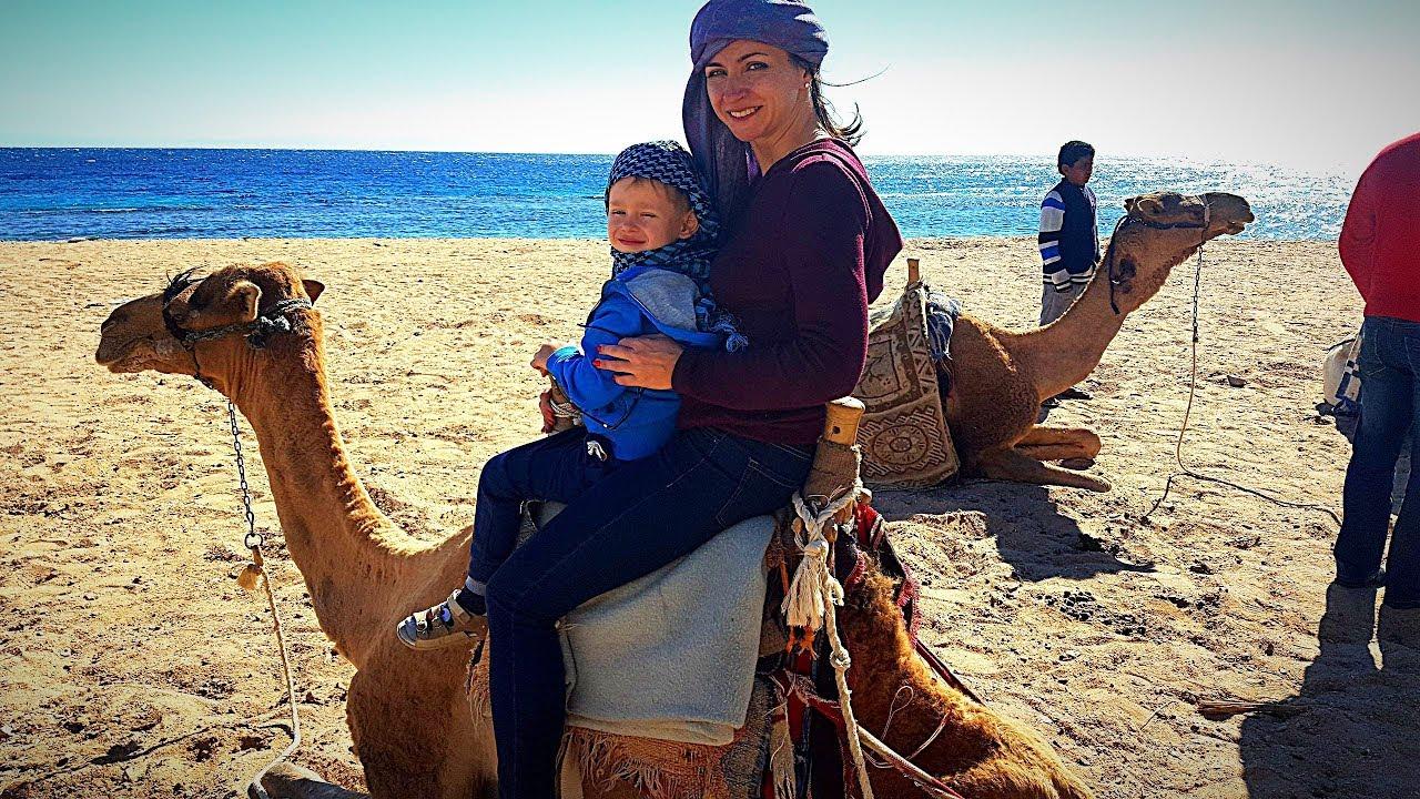 Пустыня и Море Египта Гришка на квадроциклах на верблюдах и в бассейне Детский влог 2018