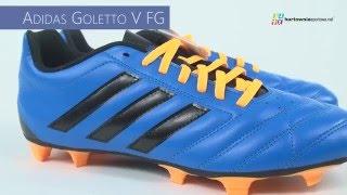 Buty piłkarskie adidas Goletto V FG AF4984