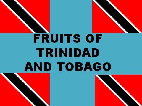 FRUITS OF TT