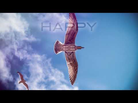 Happy Acoustic Background Music for Video - Upbeat
