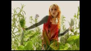 Tori Amos - Sweet The Sting (live)