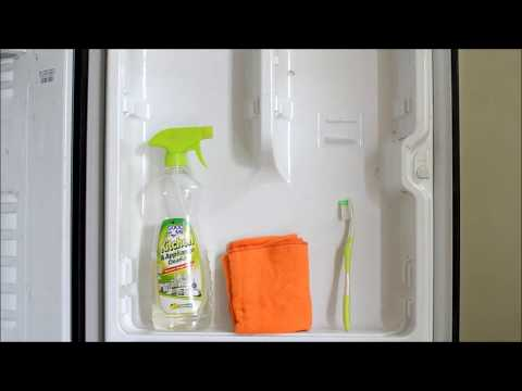 How to clean refrigerator from fungus and dirt