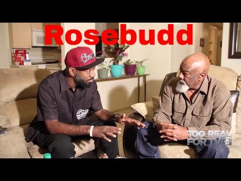 The American Pimp, Rosebudd Interview.