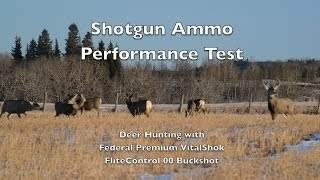 Deer Hunting Performance Test! Federal Flite Control 00 Buckshot