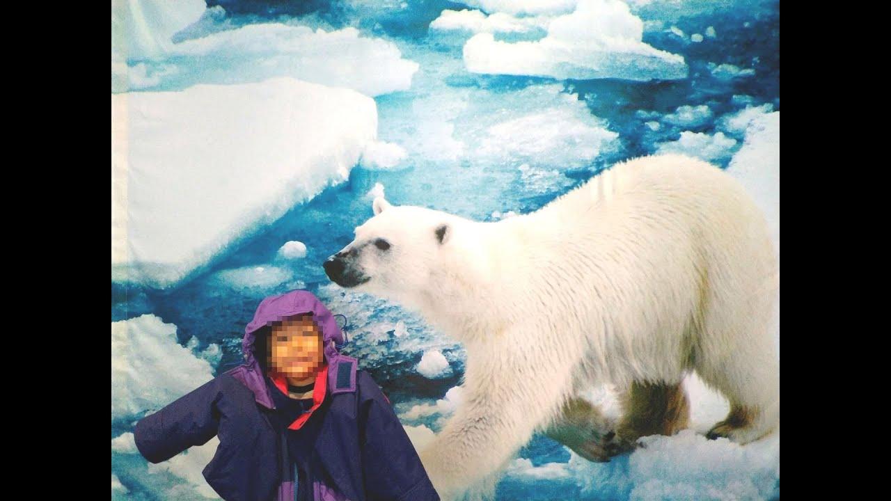 立川 南極 北極 科学 館
