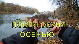 Ловля окуня на ультралайт Рыбалка в коряжнике