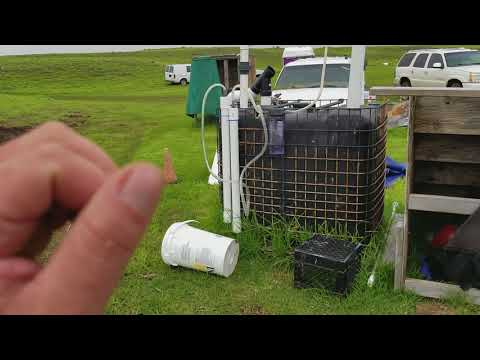 Lots of Free Biogas from Digester Plant - Living Off Grid