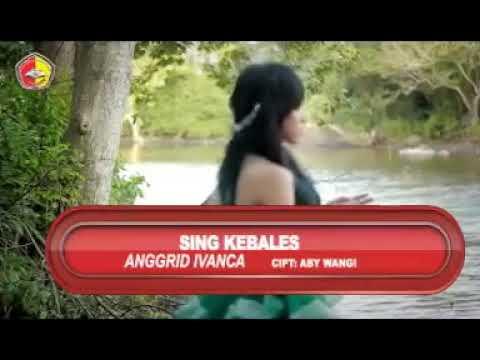 Anggrid ivanca-seng kebales