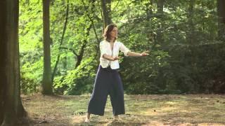 Meridiaan Chi Kung - Vuur