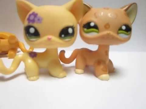 How To Spot A Fake Littlest Pet Shop Short Hair Cat On Ebay Youtube