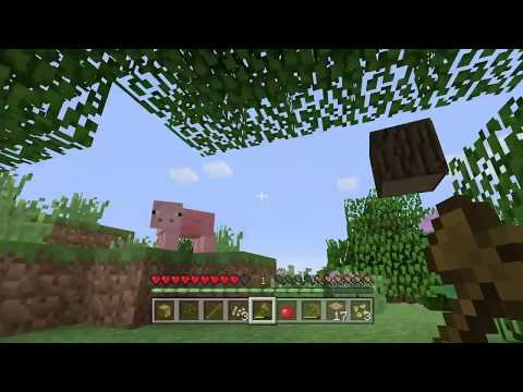 The secret land #1 [MinecraftITA]