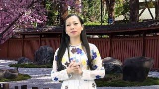 Xin Dâng Mẹ  - Trình bày: Ca Sĩ Lý Mai Trang