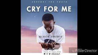 Black Sherif - Cry For Me (audio slide)