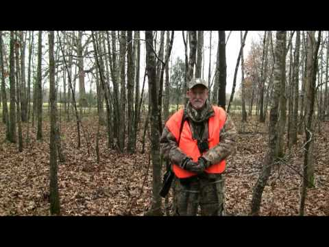how to get deer to come to your stand