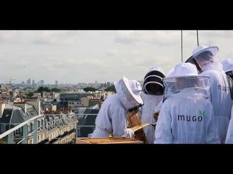 Comme un air de Paris sur la Rive Gauche! Honey, honey....