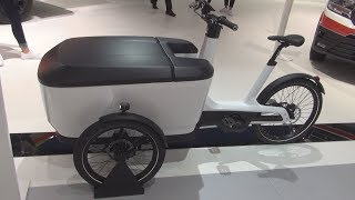 Volkswagen Cargo e-Bike with Basic box (2019) Exterior and Interior