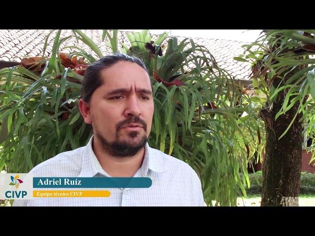 Daños ambientales en el Pacífico