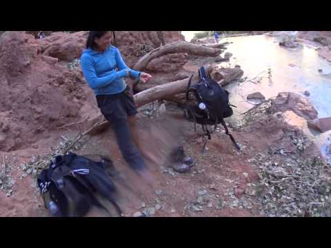 Havasu Falls and the Grand Canyon from YouTube · Duration:  3 minutes 24 seconds