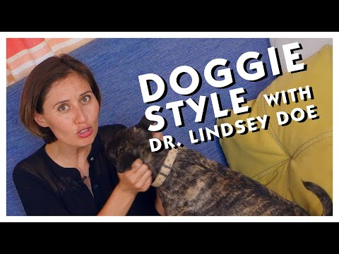Doggie Style: What I've Learned from Dogs about Sex