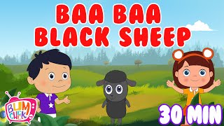 Baa Baa Black Sheep Poem | 30 Min Non Stop | Nursery rhymes & Kids songs | Bumcheek TV