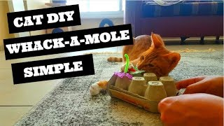 Cat Toy DIY - Cheap and simple whack a mole toy