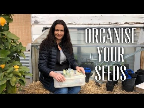 How to Organise Seeds & Sowing Seeds Early for Spring