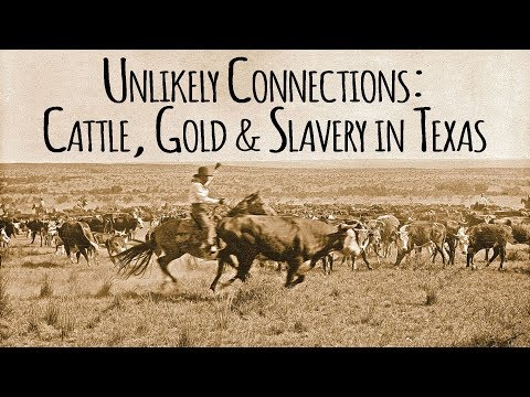 Unlikely Connections: Texas Cattle, California Gold, and Slavery in Antebellum Texas