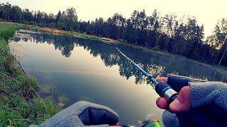 ОТДЫХ в ДЕРЕВНЕ. Рыбалка на деревенском лесном пруду.