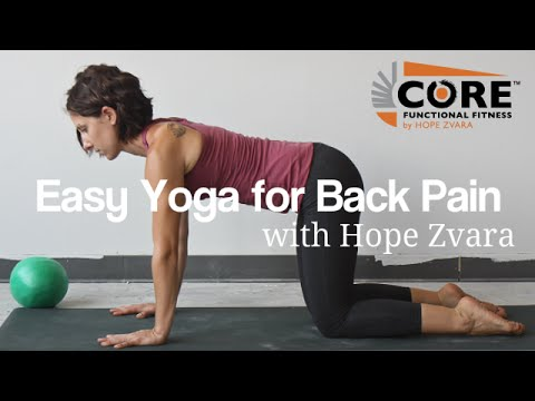 easy yoga exercises for back pain  beginners yoga video