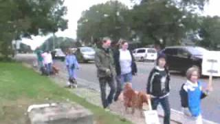March of Dogs - part 3 - Pet Parade Go!