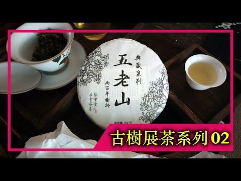 《古樹展茶系列》EP.02|2021年五老山古樹純料(4K UHD)【藝寶堂台灣張哥】