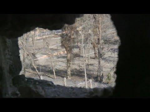 العفو الدولية تتهم النظام السوري بإرتكاب جرائم ضد الانسانية (تفاصيل)  - 22:22-2017 / 11 / 13