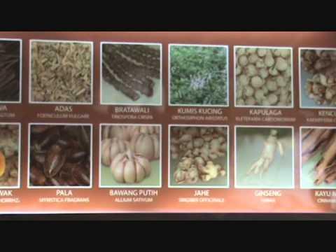 Jamu Indonesia - Indonesian traditional medicine