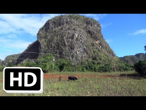 Hike Viñales National Park, Cuba, Episode 151