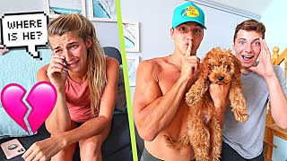 OUR PUPPY IS MISSING! *PRANK ON FIANCE*