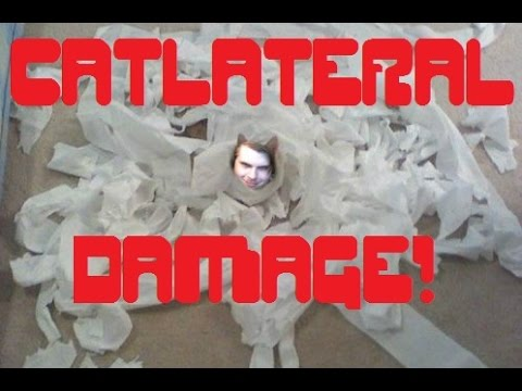 Let's Play Catlateral Damage |