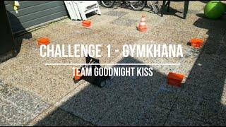 INDI Robot Games 2020 - Challenge 1: Gymkhana - Goodnight Kiss