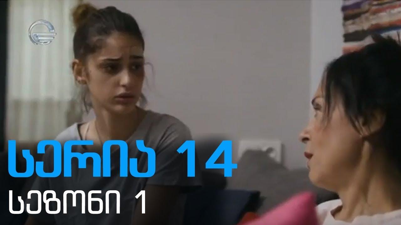 დიდი შესვენება სერია 14 სეზონი 1  didi shesveneba seria 14 sezoni1