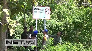 Buaya Muncul Di Nusakambangan Gegerkan Warga! - NET JATENG