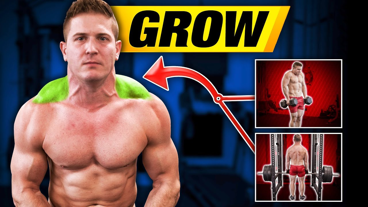 The Next 3 Things To Immediately Do About steroids to gain weight