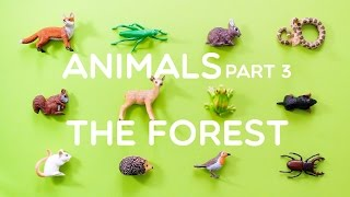 Learning Animals Names and Sounds for Kids - Part 3: The Forest