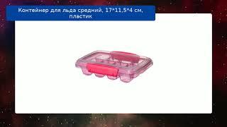 Контейнер для льда средний, 17*11,5*4 см, пластик обзор