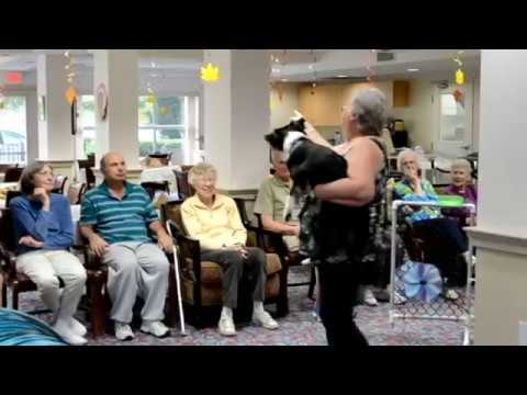 4Paws4 Agility Visits the Wedgewood Senior's Home
