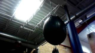 Boxing Training At Ford's Gym Madison Wi