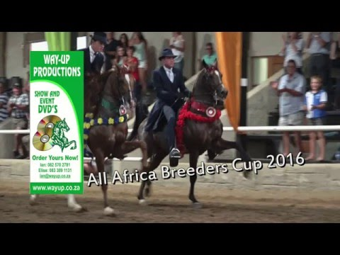 All Africa Breeders Cup 2016