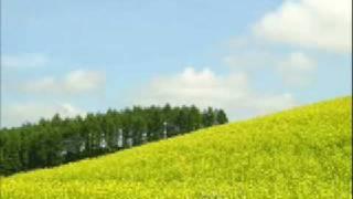 亜波根綾乃 - 大きな風