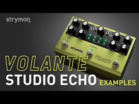 Strymon Volante - Studio Echo Examples - Demo